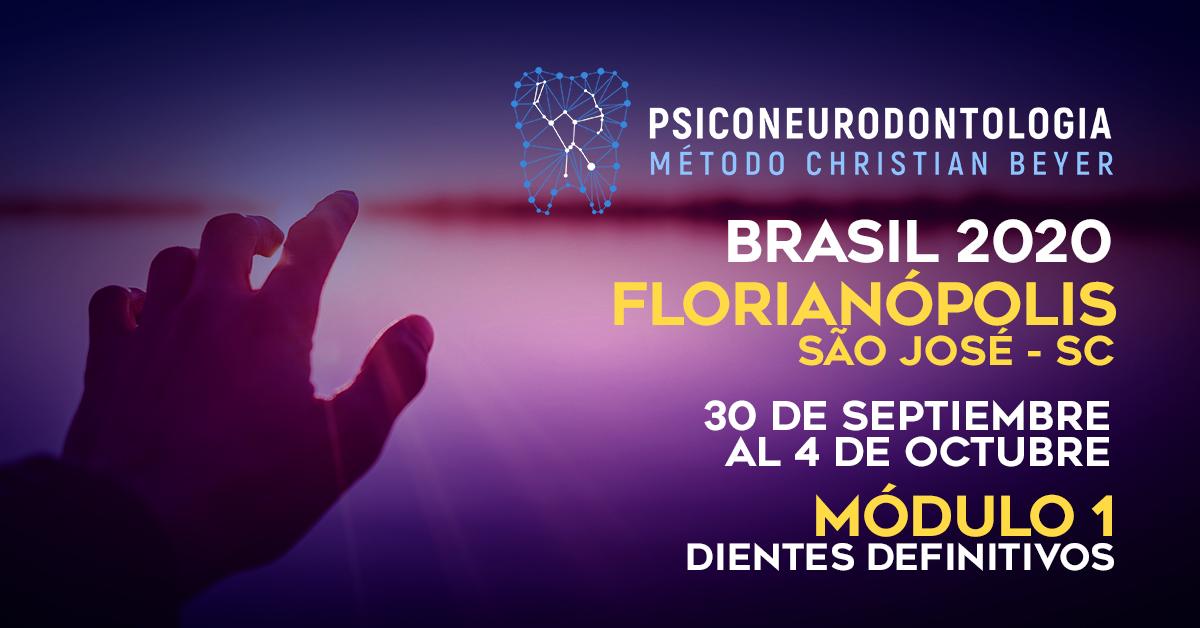 MODULO I  –  DIENTES DEFINITIVOS FLORIANÓPOLIS. São José – SC